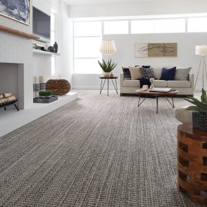 Living room carpet flooring | Dalton Flooring Outlet