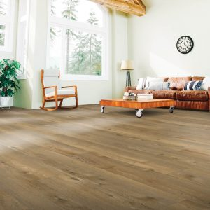 Laminate Flooring in Family Room | Dalton Flooring Outlet