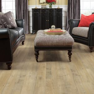 Ottoman wit Laminate Flooring | Dalton Flooring Outlet
