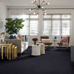 Shaw Harbor Point Carpet   Dalton Flooring Outlet