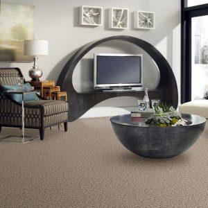Shaw Sophisticated Space Carpet   Dalton Flooring Outlet